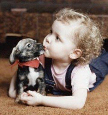 DogNames.ru - двойные и сложные клички для собак